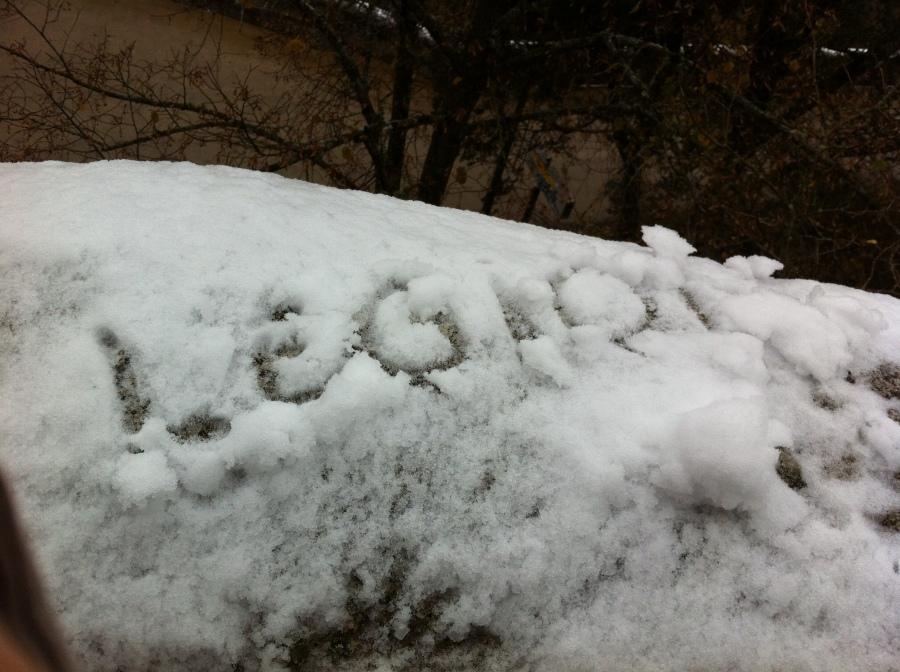 Amistad nieve
